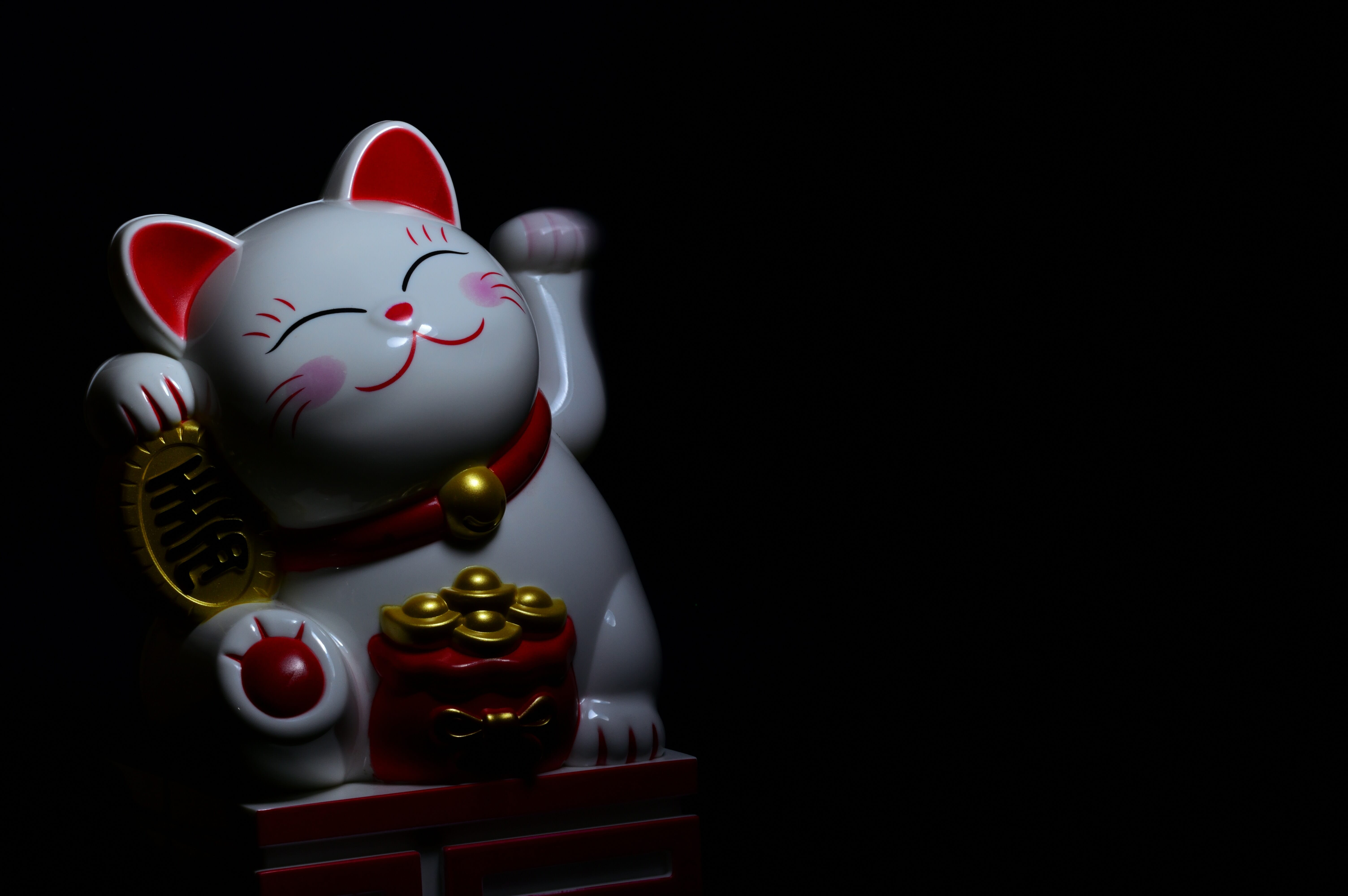 Gatto Nero Hachiko